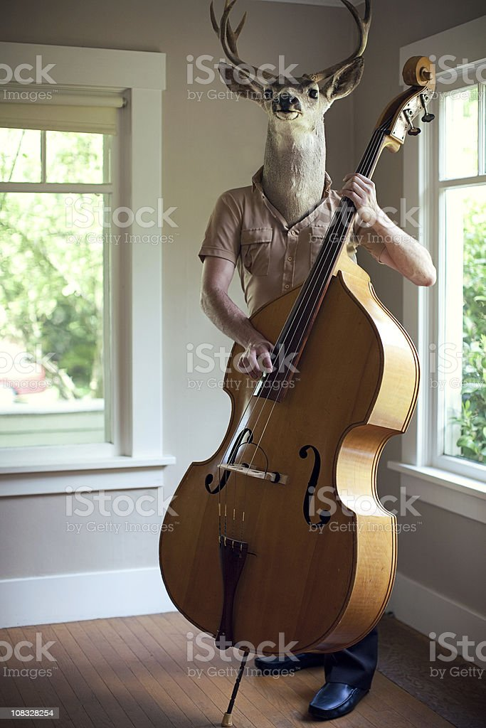 Stag Man Music Practice stock photo