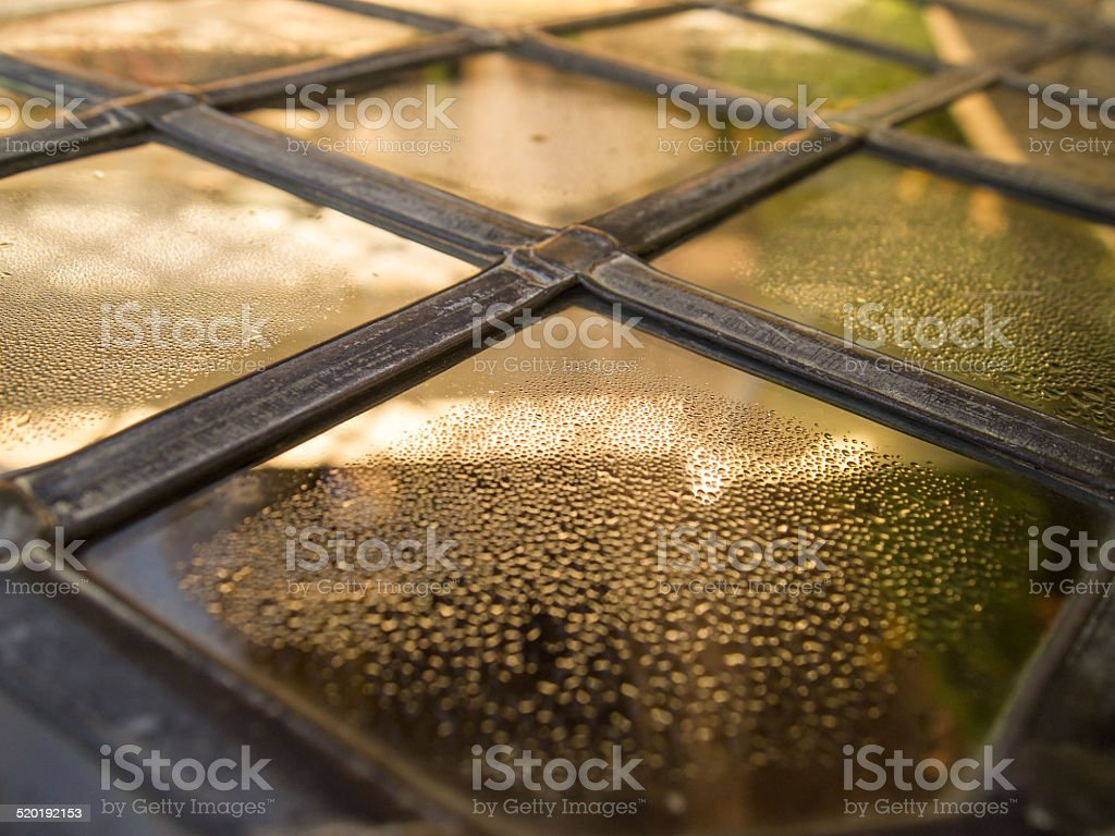 Stained Glass Leaded Pane stock photo
