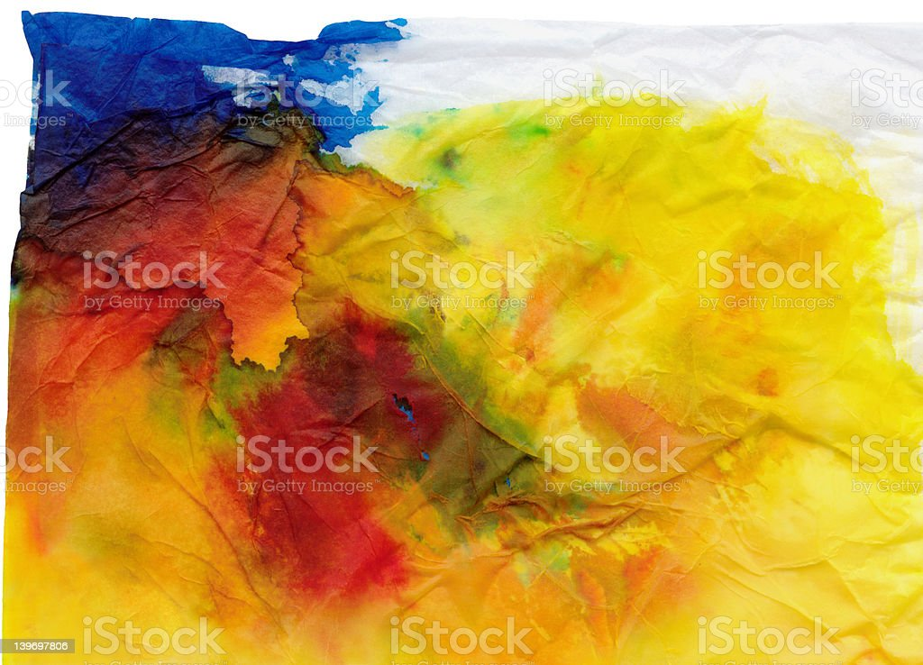 stained tissue primary royalty-free stock photo