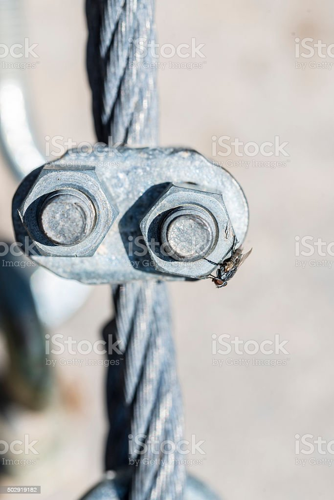Stainless steel turnbuckles and a fly stock photo