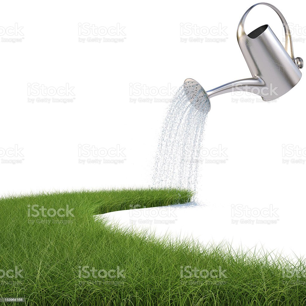Stainless watering can pouring water on grass royalty-free stock photo