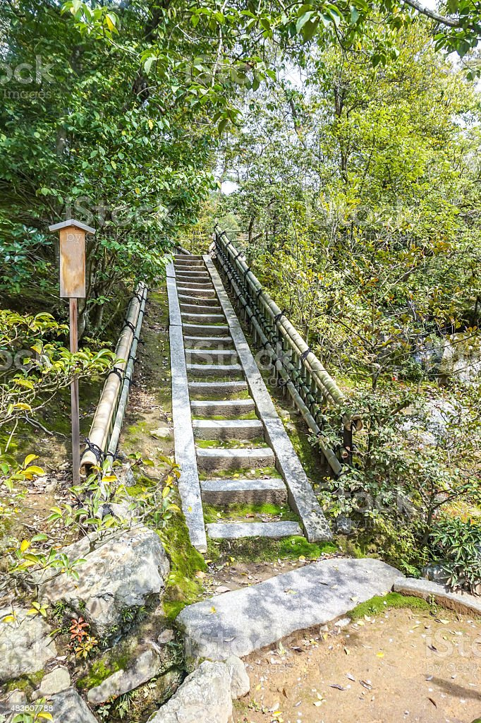 Staircase ascent in nature royalty-free stock photo