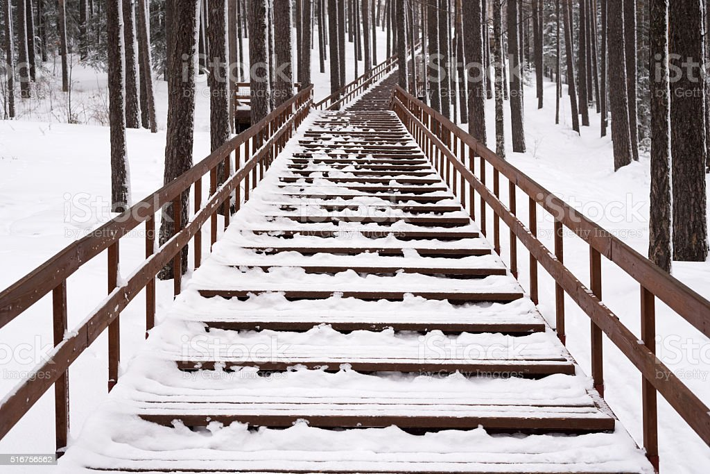 Staircase in a winter forest stock photo