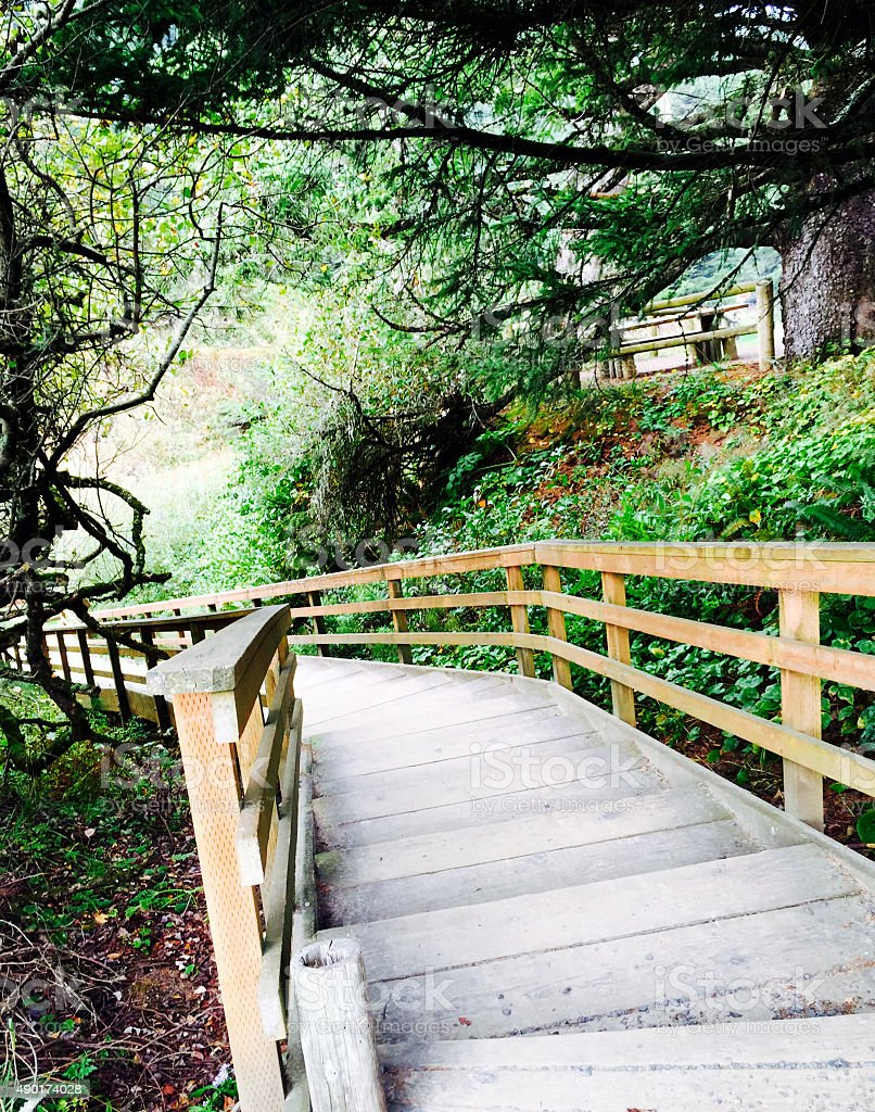 Staircase in Oregon state park royalty-free stock photo
