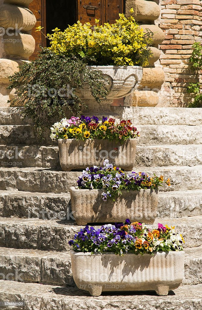 Staircase with case of flowers stock photo