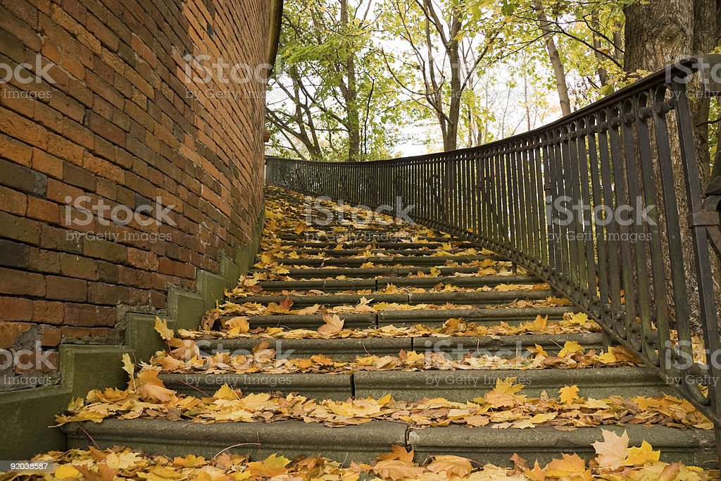 Stairs covered by leaves in autumn stock photo
