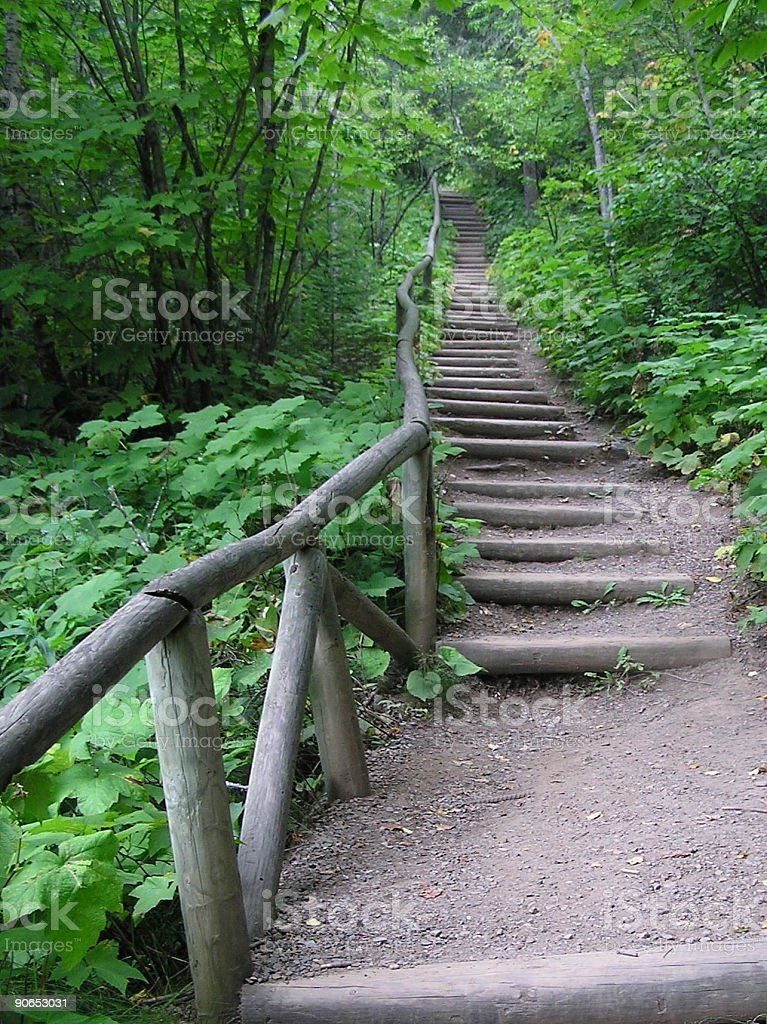 Stairs on a Green Hiking Trail royalty-free stock photo