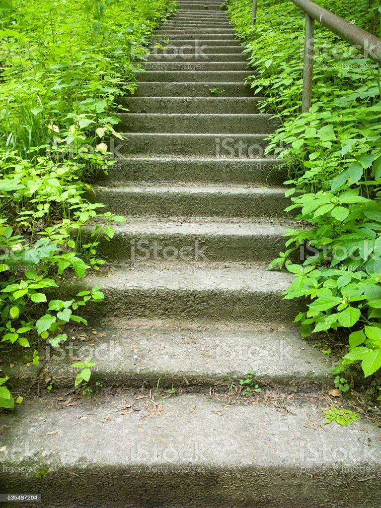 Stairs. stock photo