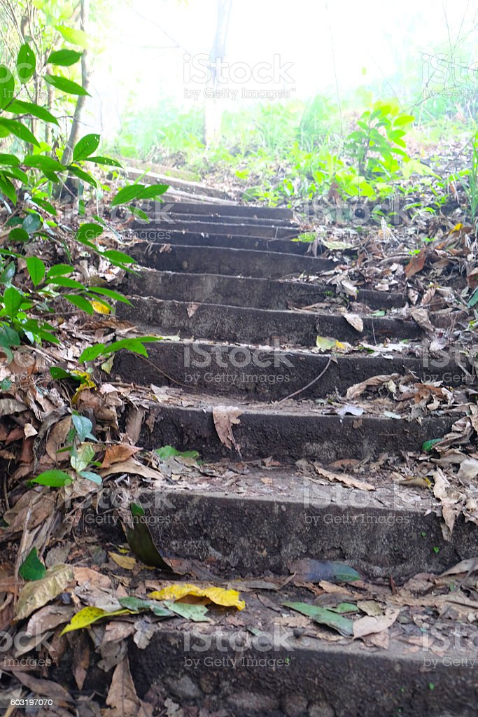 Stairs up the hill, Wong National Park, Thailand stock photo