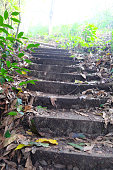 Stairs up the hill, Wong National Park, Thailand