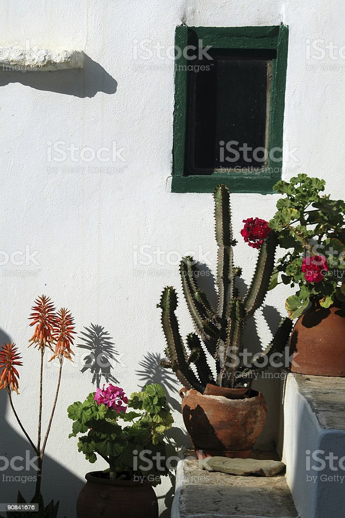 stairs with plants royalty-free stock photo