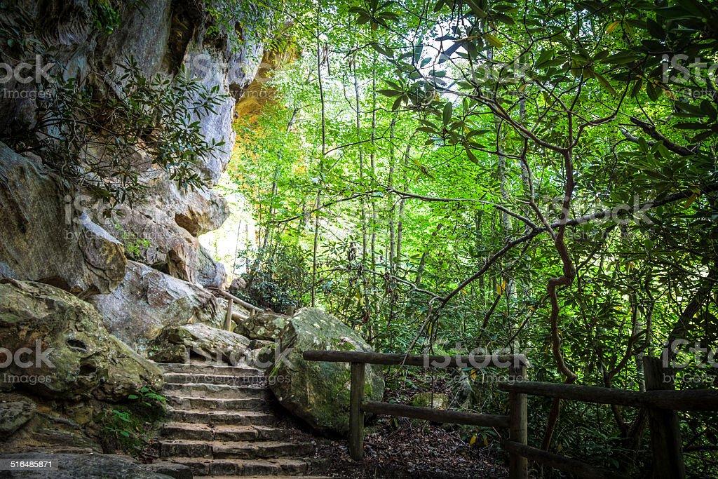 Stairway To Heaven Natural Bridge State Park In Kentucky stock photo