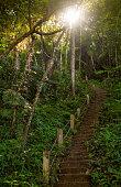 Stairway to jungle, Erawan national park
