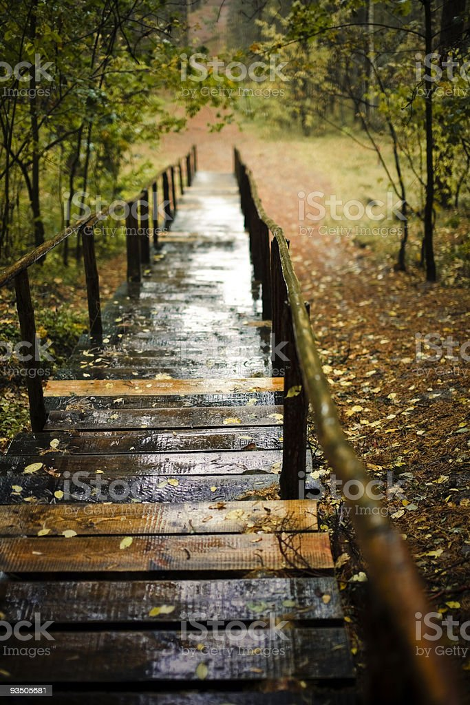 stairways in autumn park royalty-free stock photo