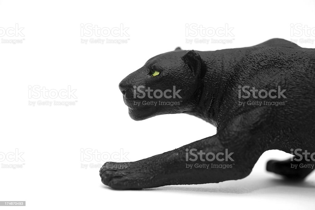 Stalking black leopard royalty-free stock photo