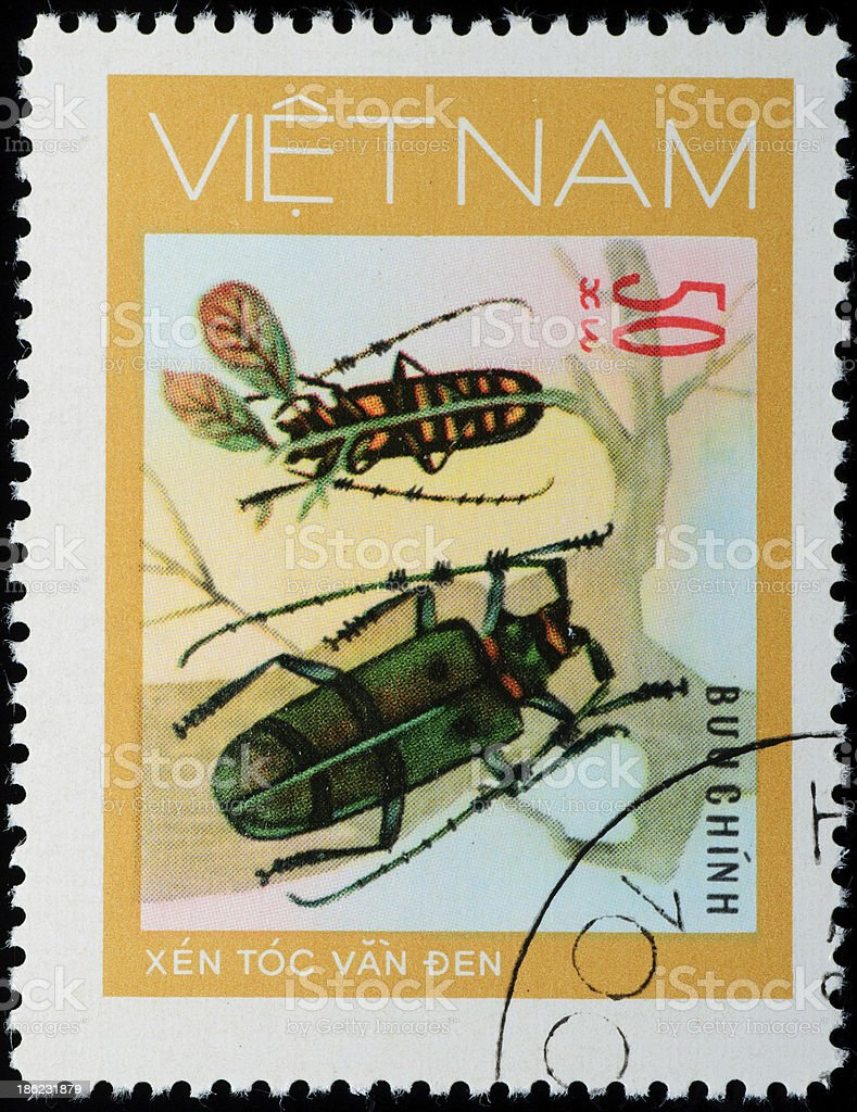 VIETNAM stamp animal insect long horn beetle royalty-free stock photo