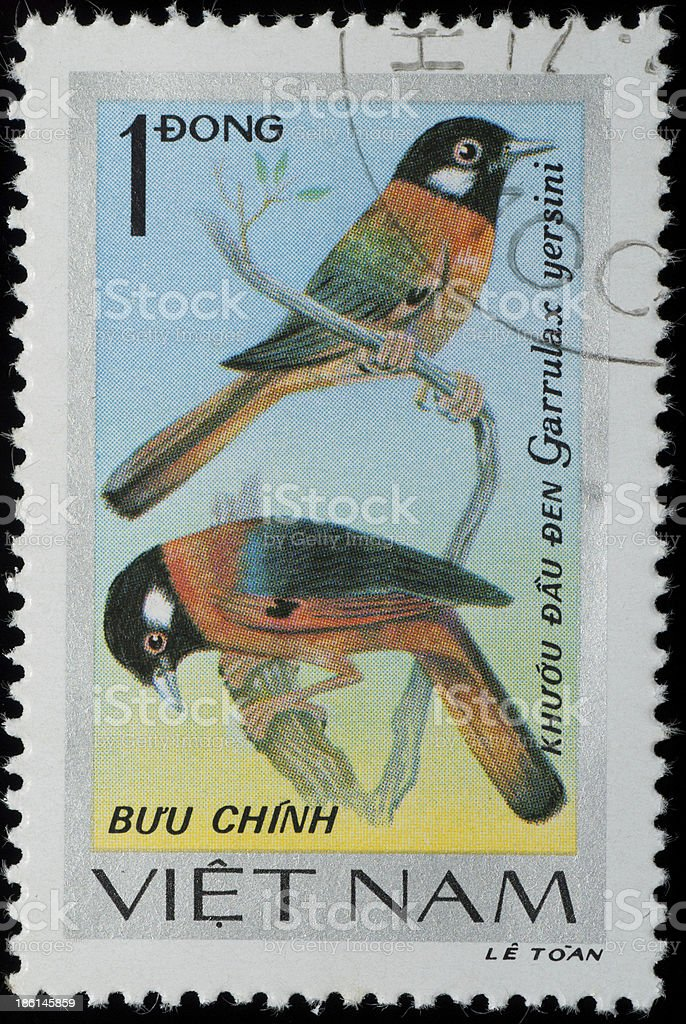 VIETNAM stamp animal songbird royalty-free stock photo