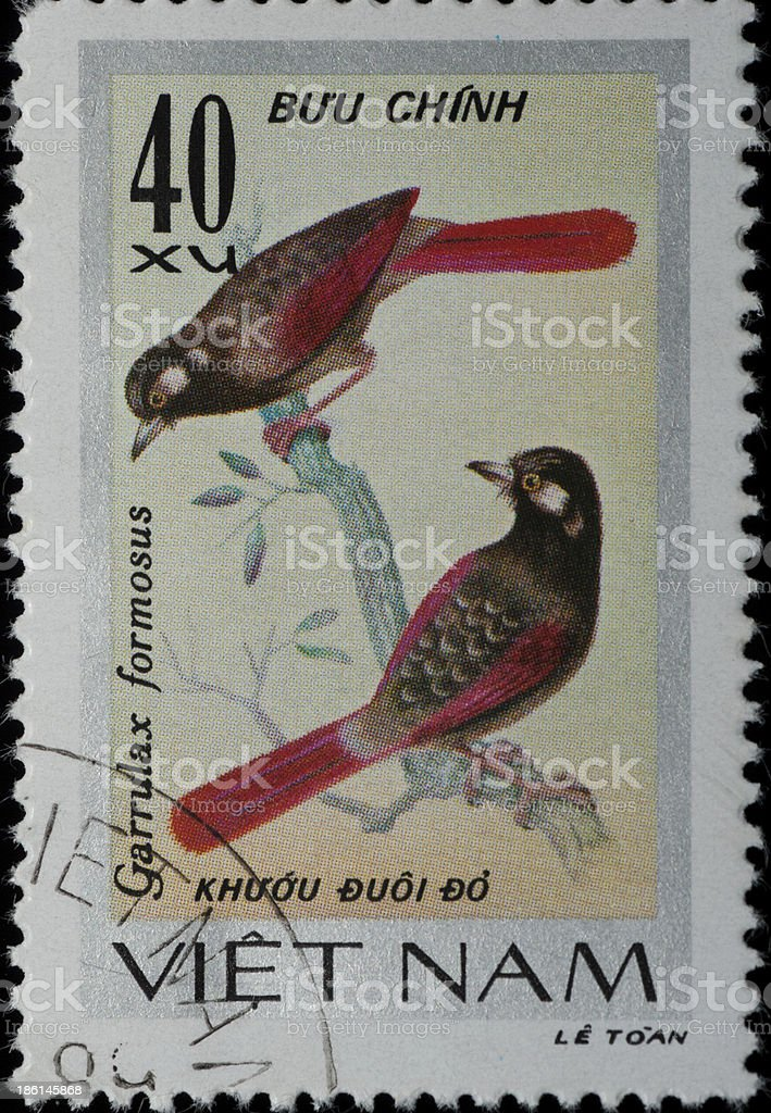 VIETNAM stamp animal songbird royalty-free stock photo