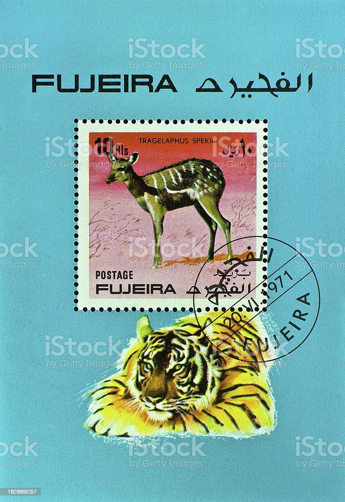 stamp with tiger and antelope - miniatur sheet of Fujeira stock photo