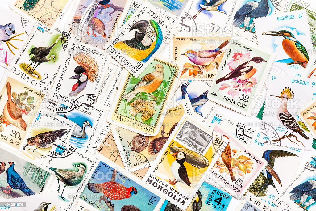Stamps printed in the USSR, united by theme  'Wild Birds' stock photo