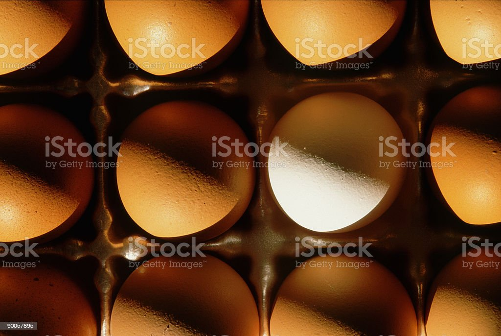 Stand out Eggs 2 royalty-free stock photo
