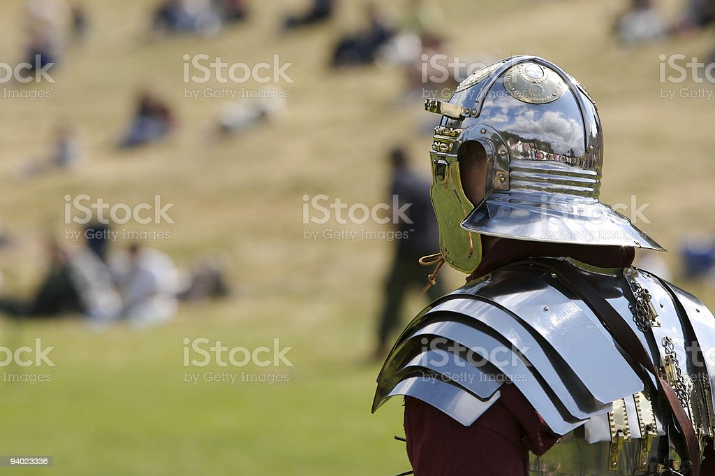 Standing Guard royalty-free stock photo