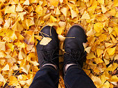 Standing in autumn ginkgo leaves