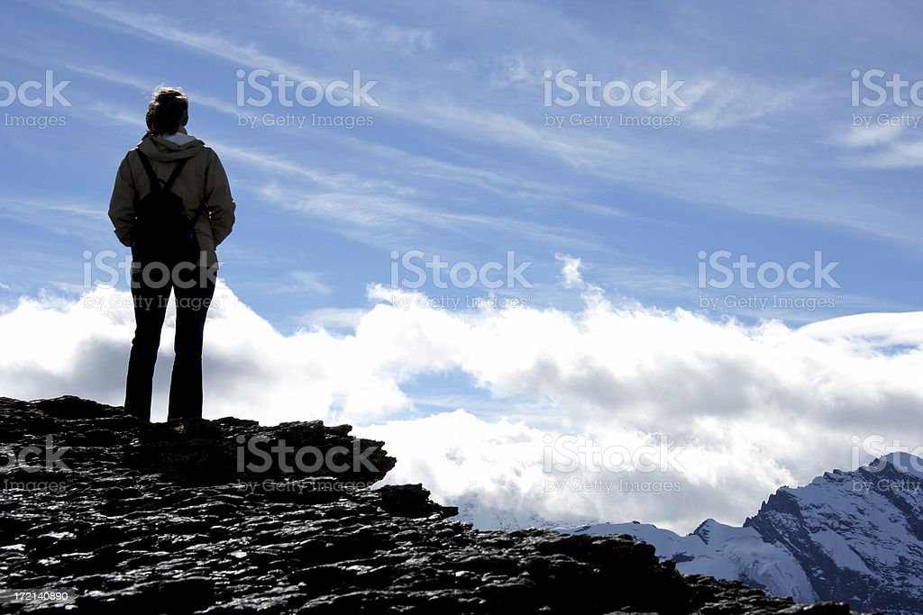 Standing on the top royalty-free stock photo