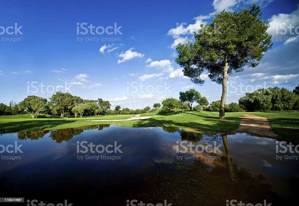 Standing Water in park royalty-free stock photo