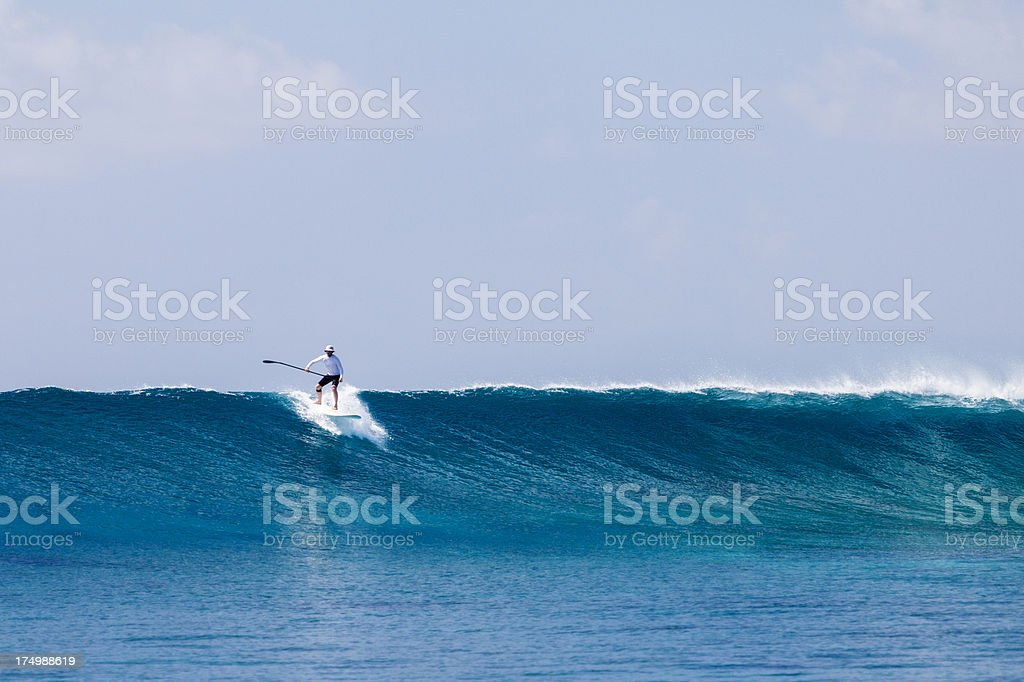 Standup paddler riding wave royalty-free stock photo