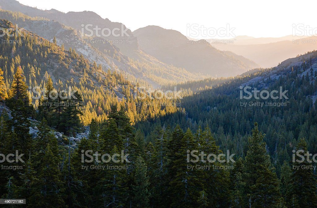 Stanislaus National Forest stock photo