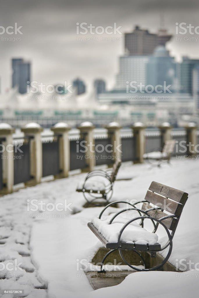 Stanley Park Winter Bench stock photo