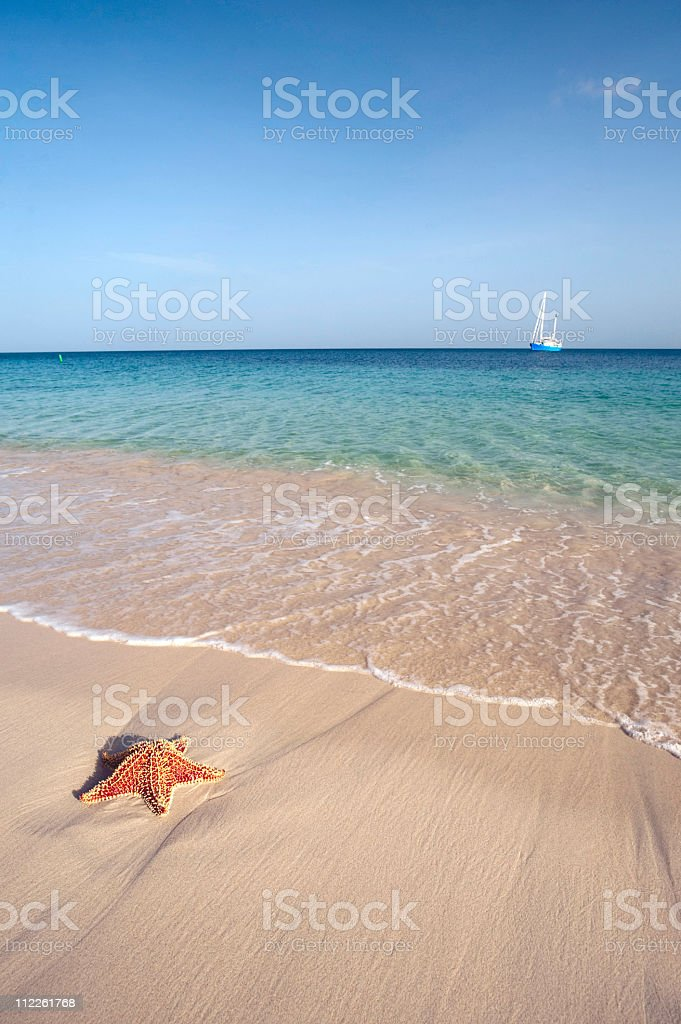 starfish and sail boat in paradise royalty-free stock photo