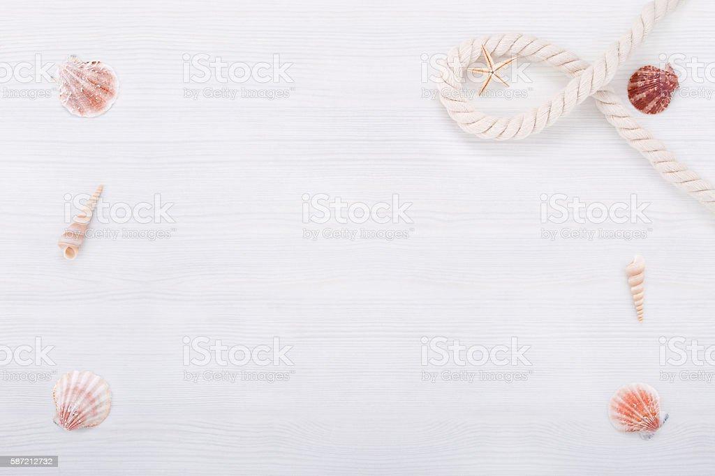 Étoile de mer et coquillages photo libre de droits