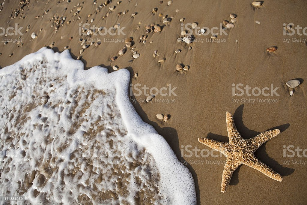 Starfish And Wave royalty-free stock photo