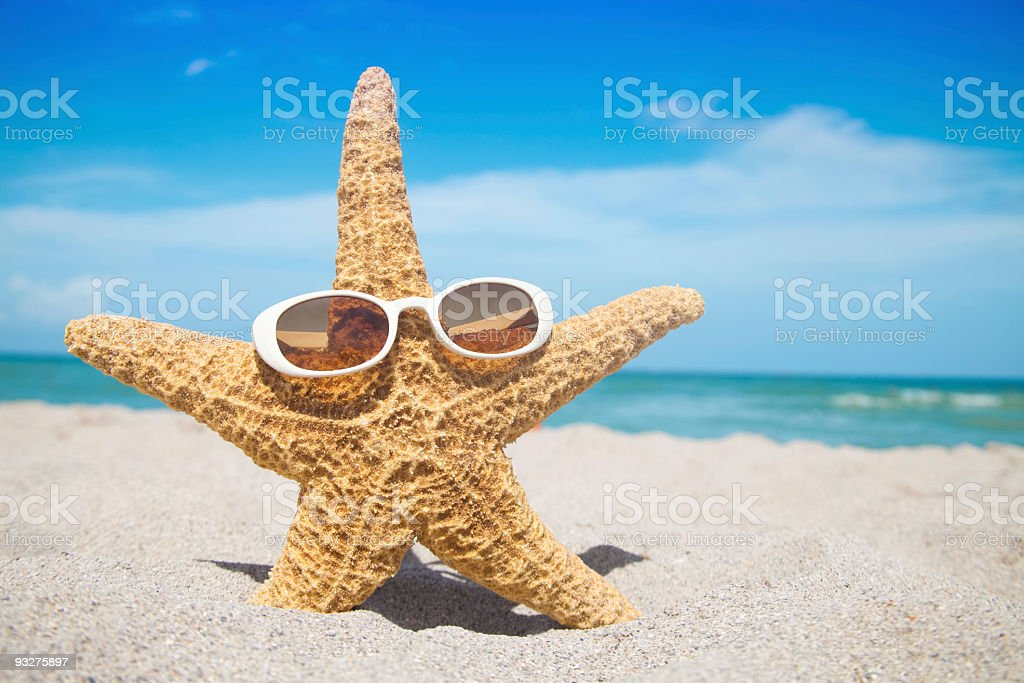 Starfish at the Beach royalty-free stock photo