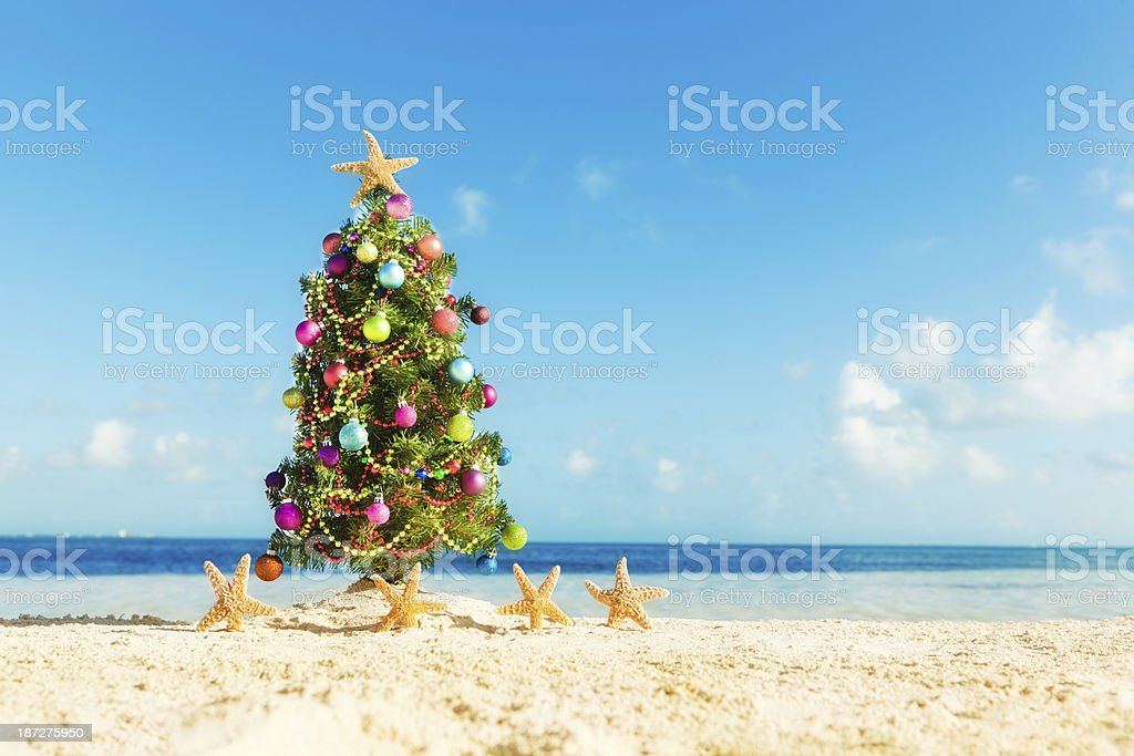 A decorated Christmas tree surrounded by dancing starfish on a...