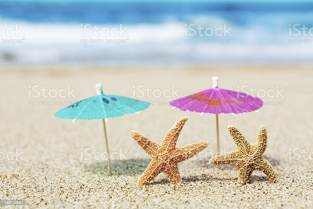 Starfish Couple Vacationing on Tropical Paradise Beach royalty-free stock photo
