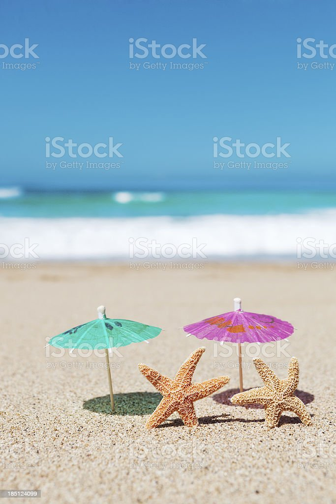 Starfish Couple Vacationing on Tropical Paradise Beach Vt royalty-free stock photo