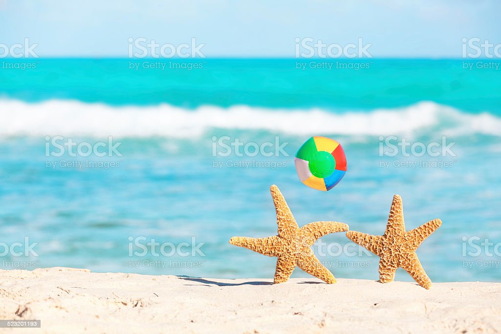 Starfish Couple with Beach Ball, Tourists Vacationing in Tropical Paradise stock photo