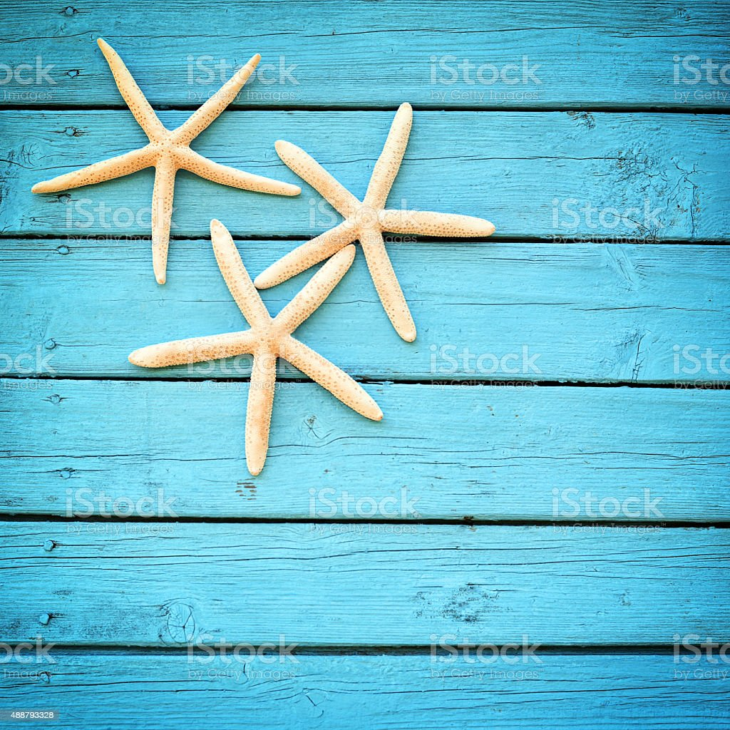 starfish on a blue background stock photo