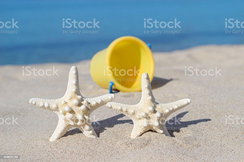 Starfish on sandy beach stock photo