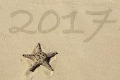 Starfish on the Beach 2017