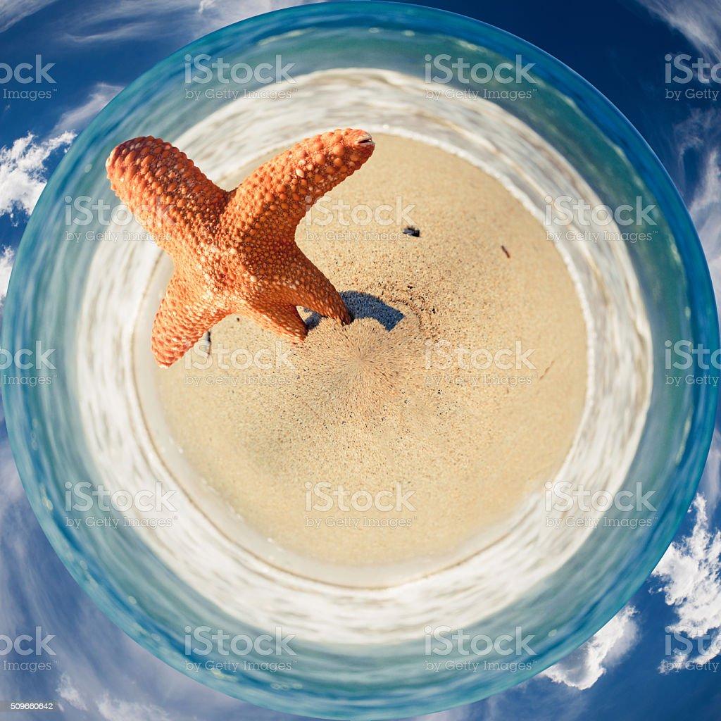 Starfish on the beach - 360-degree panorama stock photo