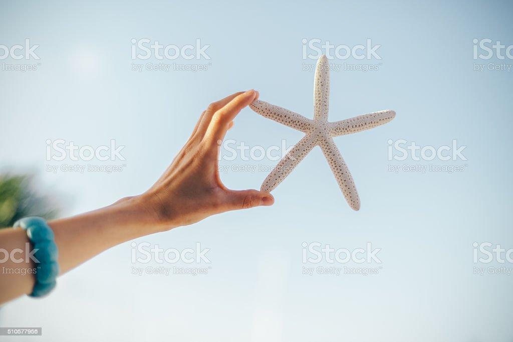 Starfish stock photo