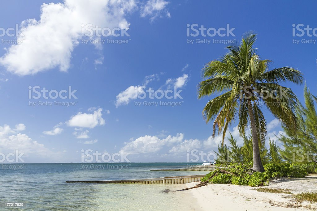 Starfish Point Beach Paradise stock photo