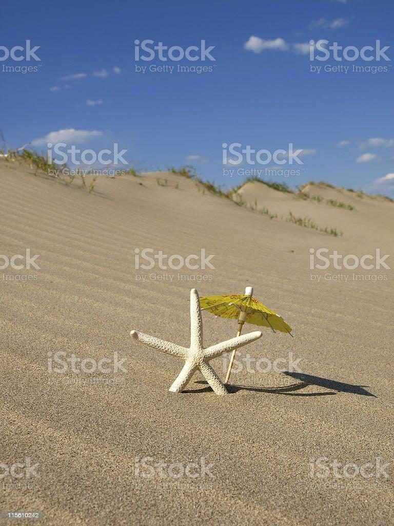 Starfish under umbrella on the beach royalty-free stock photo
