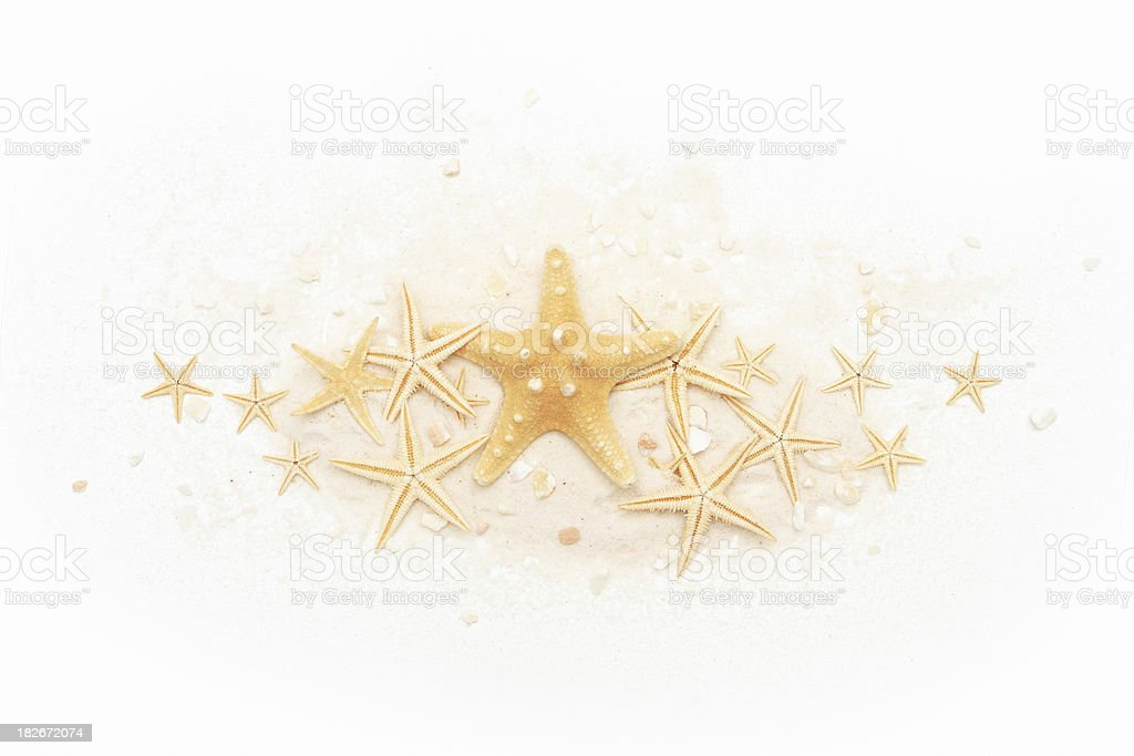 Starfishes. royalty-free stock photo