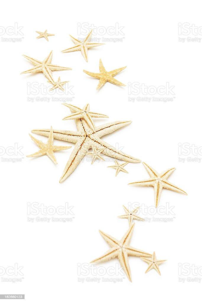 Starfishes. royalty-free stock photo