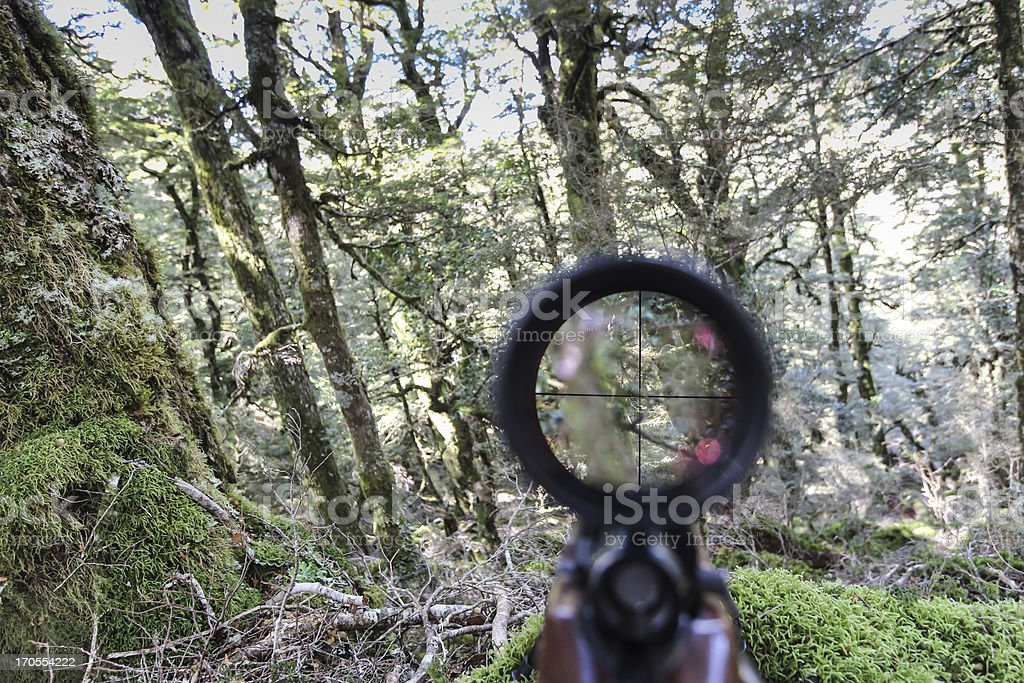 Staring down a rifle scope royalty-free stock photo